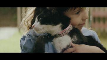 YKK AP / 赤ちゃんと猫